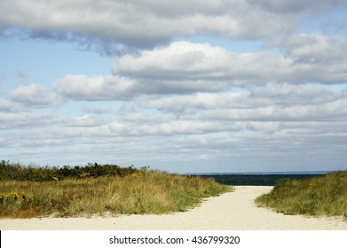 Path in sand leads through marsh grass to Buzzards Bay