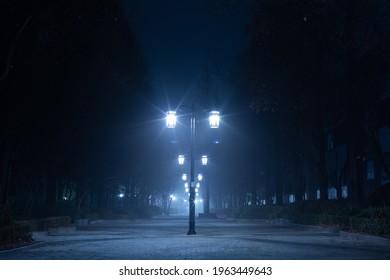 a path scenery with night fog and streetlights Bundang-gu, Seongnam-si, Korea