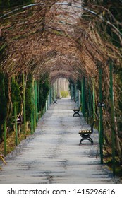 A path with several benches at wetland park, Hefei, China