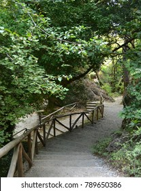 Path and steps leading down to Agios Antonios Gorge at Patsos