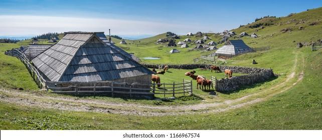 Path surrounding cottages on Velika planina (Big Pasture Plateau), Kamnik, Slovenia