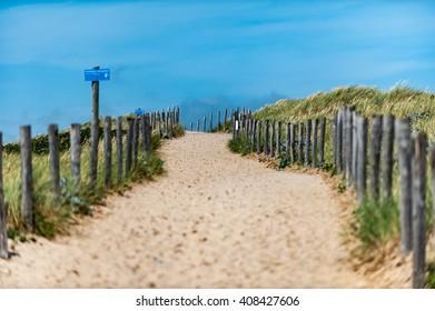 Path through the dunes to the beach.