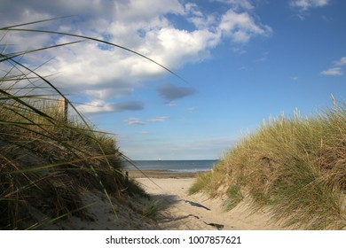 Path through dunes to the beach at the Baltic Sea