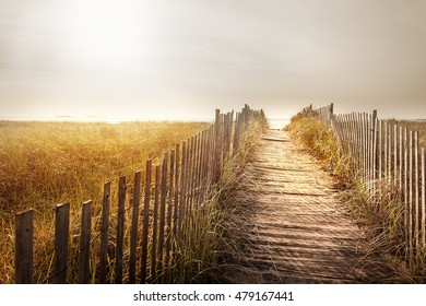 Path through the dunes to a Maine beach