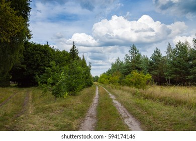 Path through a green summer forest and cloudy sky