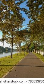 Path through quiet green garden along peaceful lake