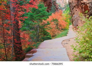Path through Refrigerator Canyon towards Angels Landing in Zion Canyon National Park, Utah.