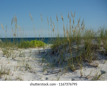 Path through the Sand Dunes and Sea Oats to the Gulf of Mexico Beach