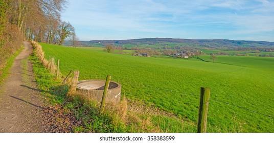 Path through sunny farmland in winter