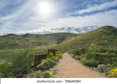 Path through the Thunderbird Conservation Park located in Glendale, Arizona.