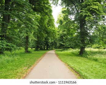 Path through trees in a country estate, England