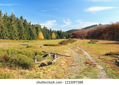 path for tourists leading through autumn landscape with meadow and forest, Beskydy mountains, Czech Republic