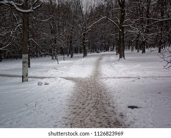 path trampled in the snow-covered Park, Moscow