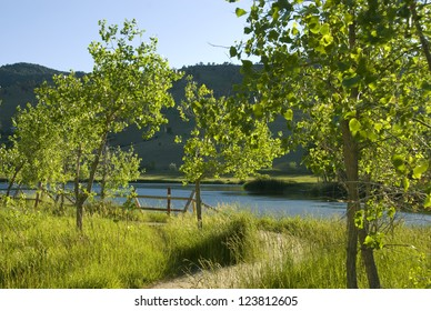 Path turns left by Wonderland Lake near Boulder, Colorado, with small cottonwood trees and a fence