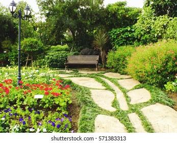 path way in garden with green grass background
