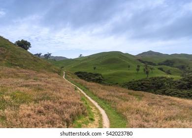 Path to Wharariki Beach