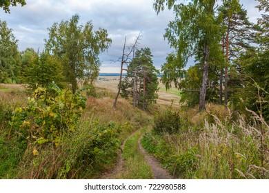 The path which runs unto the hills