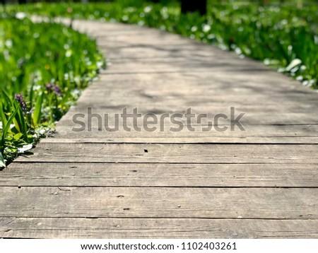 path-wooden-planks-park-450w-1102403261.