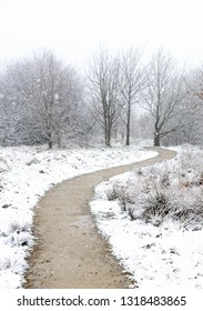Path in woodland, covered with snow on british countryside.