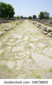 The path,Ancient ruins of Paestum