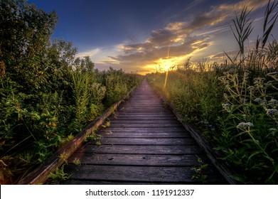 Pathway to adventure