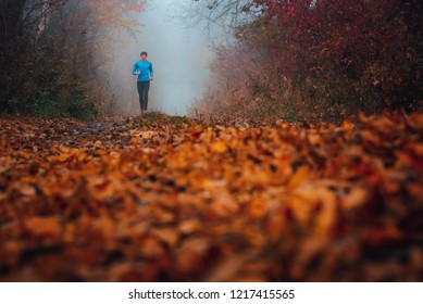 Pathway in autumn forest. Runner in misty morning nature