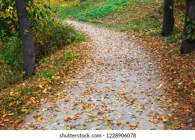 pathway in a beautiful autumn park