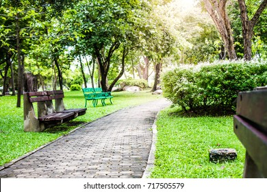 The pathway and benches in the garden are green grass, sunny in summer.