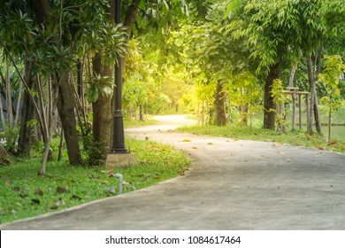 Pathway or bicycle path along the park. Park and outdoor concept.