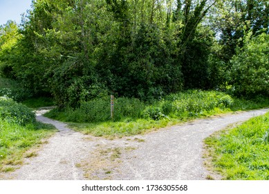 Pathway concept of choice with crossroads splitting in two ways for someone to walk - Shutterstock ID 1736305568
