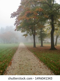 Pathway disappearing into the mist through a lawn with trees starting to show autumn colors, photographed in northern Germany
