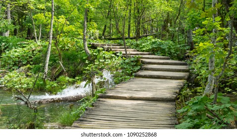 Pathway in the forest at Plitvice Lakes National Park in Croatia