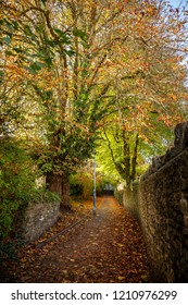 Pathway in Frome, in autumn, covered in fallen leaves