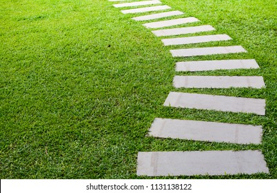 Pathway in the garden, stepping stones in the grass lawn, the way to success and milestone concept.