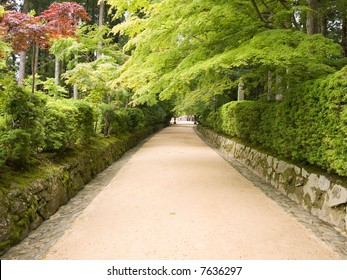 Pathway leading through the forest to the temples on Koya mountain, Japan