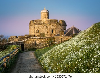 Pathway lined with Snowdrops in early morning light, leading to St Mawes Castle in South Cornwall , UK