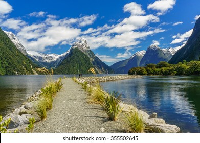 Pathway in the Milford Sound, New Zealand