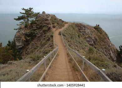 Pathway at Muir Beach California