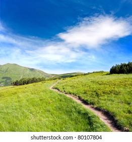 pathway on green ridge in mountains