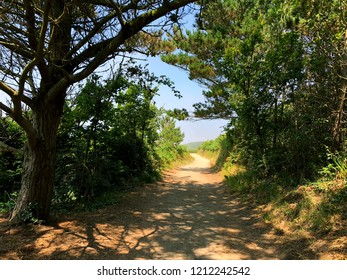 Pathway on the island Herm in the Bailiwick of Guernsey.