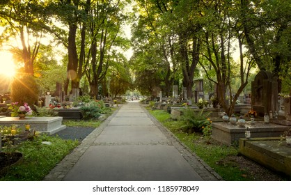 Pathway on old cemetery
