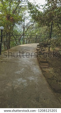 Pathway in a park, Sochi