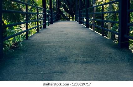 pathway in pattaya national park (cross process)