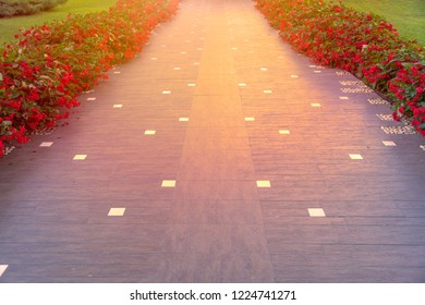 Pathway with red flowers on sides of road