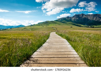 Pathway Running path in mountain: Alpe di Siusi Saiser Alm