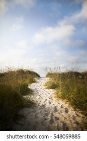 Pathway in sand dune to beach