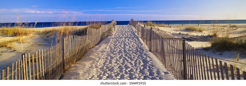 Pathway and sea oats on beach at Santa Rosa Island near Pensacola, Florida
