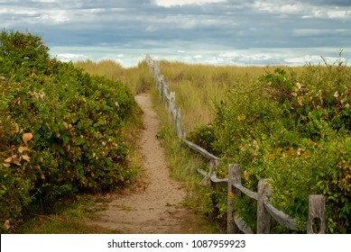 The pathway to the Siasconset beach, Nantucket island, MA