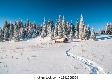 Pathway in snow leading to a lone mountain hut. Picturesque winter scene in mountains of Slovakia.