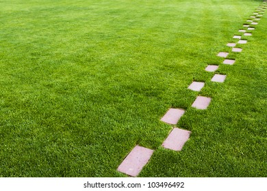 Pathway of stone bricks leading up and away at an angle in a grass field. Who knows where it leads?